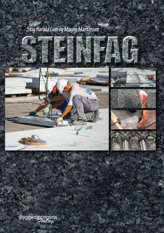Large steinfag